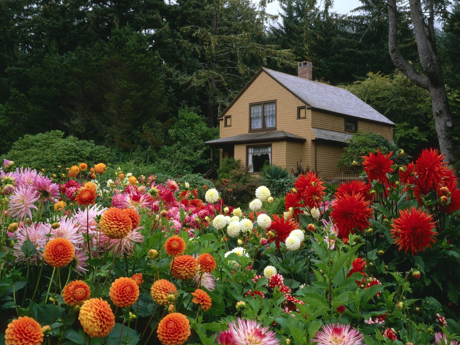 garden_house_oregon-normal