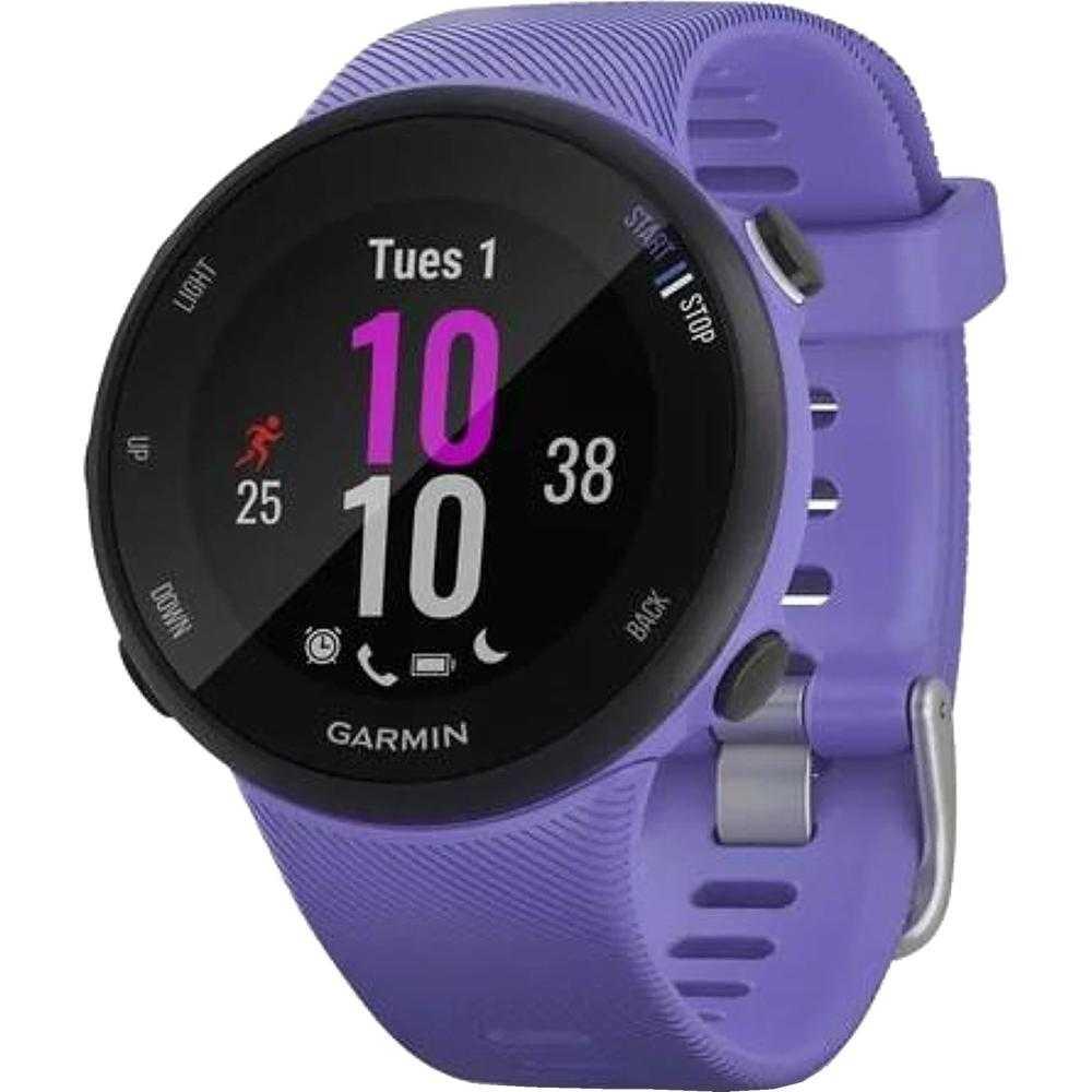 Smartwatch Garmin Forerunner 45s, Iris